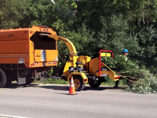 Commercial Tree Services-The Hammocks FL Tree Trimming and Stump Grinding Services-We Offer Tree Trimming Services, Tree Removal, Tree Pruning, Tree Cutting, Residential and Commercial Tree Trimming Services, Storm Damage, Emergency Tree Removal, Land Clearing, Tree Companies, Tree Care Service, Stump Grinding, and we're the Best Tree Trimming Company Near You Guaranteed!
