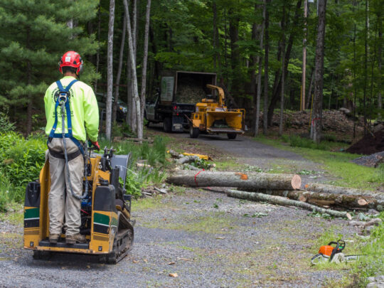 Emergency Tree Removal-The Hammocks FL Tree Trimming and Stump Grinding Services-We Offer Tree Trimming Services, Tree Removal, Tree Pruning, Tree Cutting, Residential and Commercial Tree Trimming Services, Storm Damage, Emergency Tree Removal, Land Clearing, Tree Companies, Tree Care Service, Stump Grinding, and we're the Best Tree Trimming Company Near You Guaranteed!