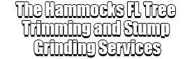 The Hammocks FL Tree Trimming and Stump Grinding Services